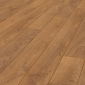 Krono Original Harlech Oak 8 mm